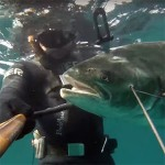 Video Pescasub: L'Appuntamento con la Grande Leccia