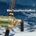 Licenza di Pesca a Pagamento: Stralciati Definitivamente gli Articoli che la Introducevano