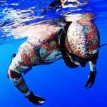 Apnea, Pescasub e Mal di Mare: una Convivenza Difficile ma Possibile