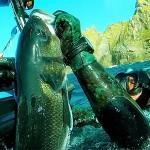 La Grande Pescasub alla Settimana del Master Città di Palma 2017