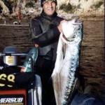 Attrezzature e casualita' nella pesca dei grandi pelagici