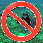 Ecco perchè la Pesca in Apnea è bandita da tutte le AMP italiane