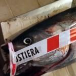 Pesca Sportiva: scoperto mercato nero del pesce per centinaia di migliaia di euro