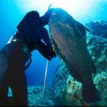 """Mondiale Pesca Sub 2020: l'Italia Beffa la Tunisia, i Retroscena e l'Incognita """"Cernia"""""""