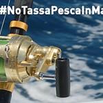 Uniti Contro la Licenza di Pesca a Pagamento: la Politica ascolti i Pescatori!