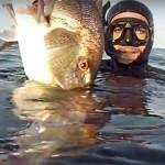 [Video] Pescasub nel Torbido: A Caccia di Ombre – ISTANTI dal Blu ep.14