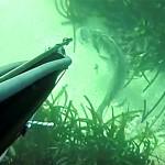 [Video] Pescasub e Padelle: A Colpo Sicuro – ISTANTI dal BLU ep.9