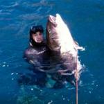 Video pescasub: il paradiso delle Ricciole Giganti
