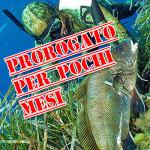 Permesso Gratuito per la Pesca in Mare: Prorogato, ma Solo per Pochi Mesi