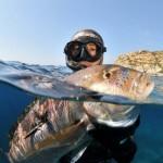 Pesca Sportiva: solo il 5% delle Catture (Professionale il 95%) ma 90 Milioni di Indotto