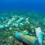 Plastica in Mare: è Oltre il 77% dei Rifiuti sul Fondo Marino!