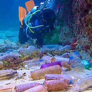 Plastica In Mare è Oltre Il 77 Dei Rifiuti Sul Fondo Marino