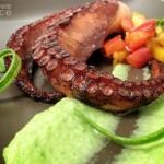 Polpo piastrato su crema di zucchine e brunoise di peperoni