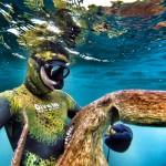 Curiosità: il Polpo è davvero l'animale più intelligente del mare?