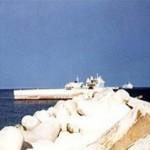 Pescasub fermato mentre pesca all'imbocco del porto di Sestri Levante