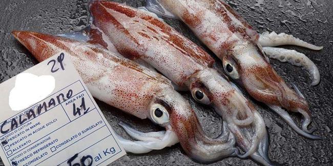 prezzo pescheria