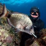 Permesso Gratuito per la Pesca in Mare: Prorogato a Tempo di Record!