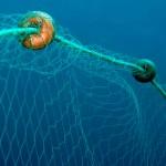 Pescasub: Divieti, Distanze e Segnalazione di Reti da pesca e Palamiti