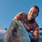 Video Pesca Sub: la Grande Ricciola dopo il Lungo Aspetto (42 kg)
