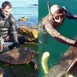 Pescasub Salvano 2 tartarughe e 1 Delfino da Lenze e Reti Abbandonate