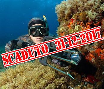 Scaduto il Permesso Gratuito per la Pesca in Mare, cosa Succede Adesso?