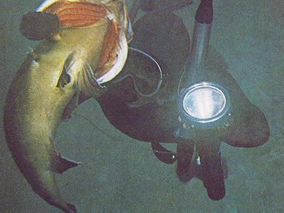 Intervista a Massimo Scarpati: l'Uomo che ha Cambiato la Pesca in Apnea