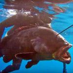 SONDAGGIO: Chi Vorresti Titolare al Mondiale 2020 di Pesca Sub?