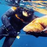 Vota il tuo campione: Chi Vincerà Il Mondiale 2016 di Pesca in Apnea?