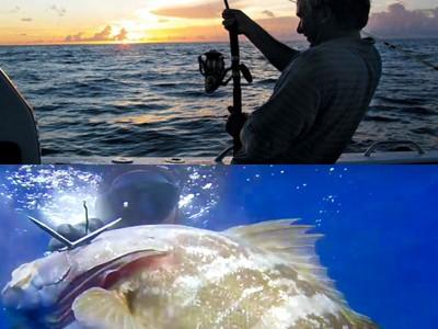 SONDAGGIO: quanto Spendi all'Anno per la Pesca?