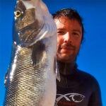 Video Pesca Sub: una Grossa Spigola Sfuggente (8 kg)