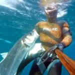 Video Pescasub Spigola: una Coppiola da Quasi 11 kg
