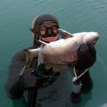 La torcia nella pesca in apnea: istruzioni per l'uso
