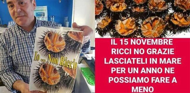 stop riccio