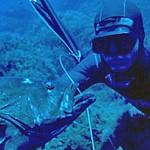 """Mondiale Pesca in Apnea 2016: Esplode il problema """"Taravana"""""""