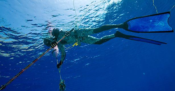 il diving reflex induce il rilassamento
