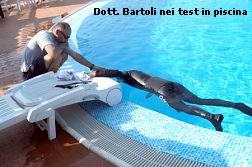test_piscina1