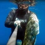 Video Pescasub con i Maestri: Roberto Tiveron e la Leccia Sfuggente