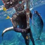 Pesca Ricreativa: il Limite dei 5 kg Prevede una Tolleranza?