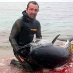 Pesca del Tonno: il Re e' caduto!