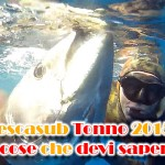 Pesca Tonno 2015: tutto quello che c'è da sapere