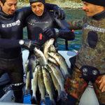 Gare Pesca Sub: Santi, Smeraldi e Caffero Vincono il 1° Trofeo CSAT