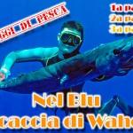 Pescasub tropicale: nel blu a caccia di wahoo (1a parte)